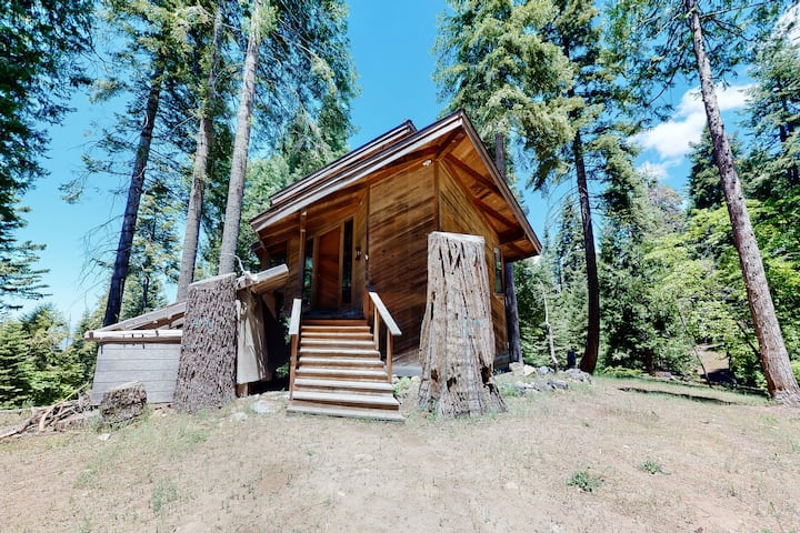 New listing! Secluded getaway w/ cathedral ceilings & a wood-burning fireplace