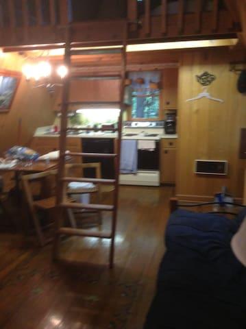 Kitchen and Loft Upstairs
