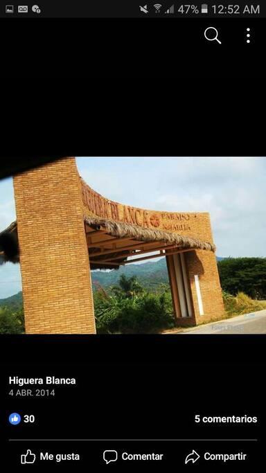 arco entrada principal de higuera blanca