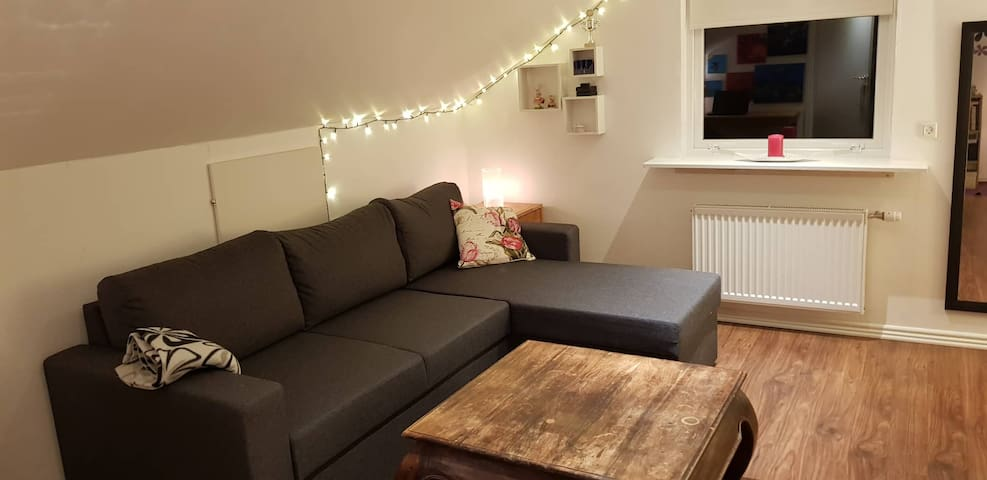 Bedroom with 1 double bed and 1 double sofabed