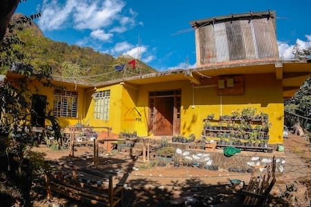 Camp Dziikopii-  your abode in Dzukou and Hornbill