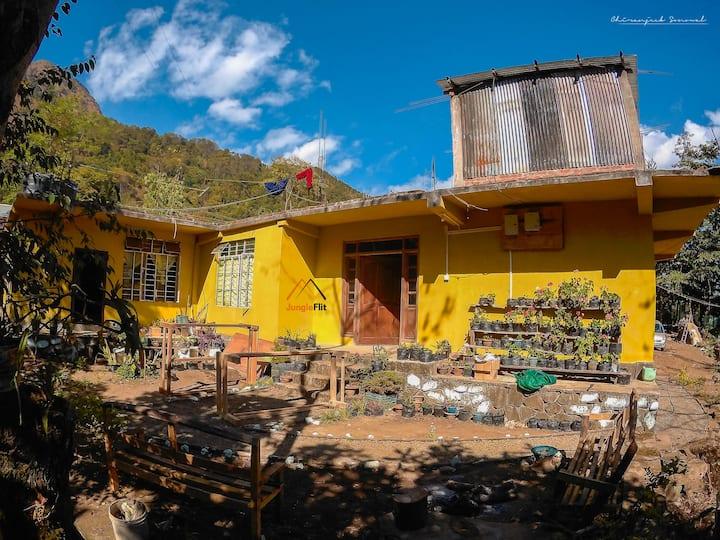Camp Dziikopii-  your abode in Dzukou and Hornbill