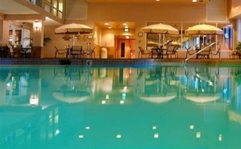Large indoor swimming pool, don't be afraid to jump in!