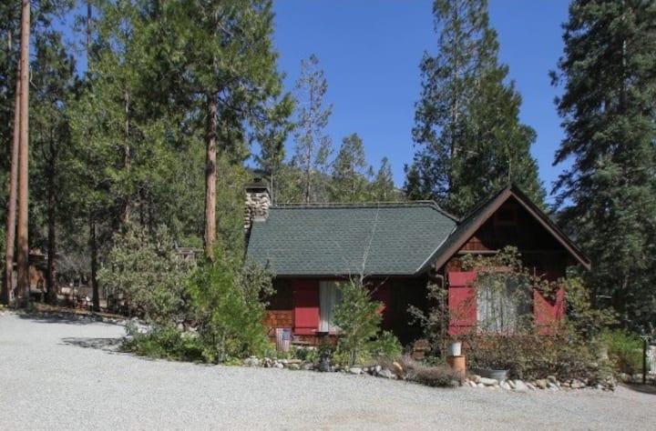 Fern Valley Cottage: Pet Friendly w/ Fenced Yard