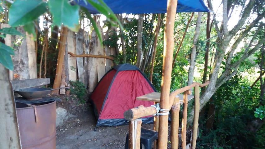 Acampando en Chiloé