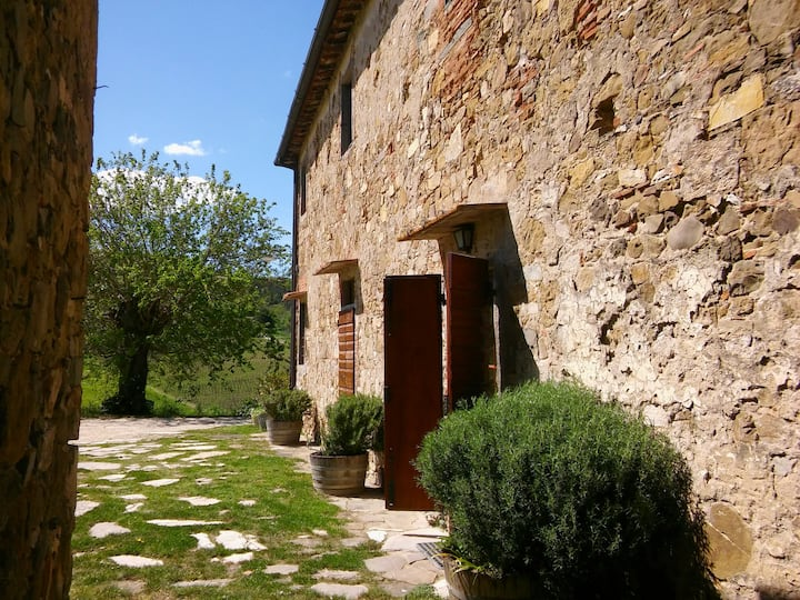 Apartment with pool in Chianti