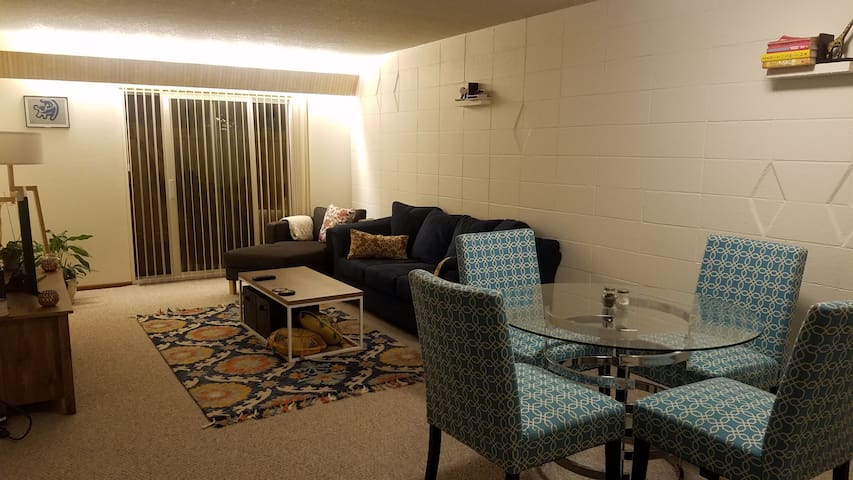 Large Apartment: Between downtown and the airport!