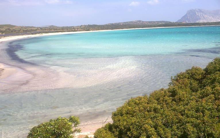 Villa Vista mare 400 mt spiaggia - Lu Impostu - Hus