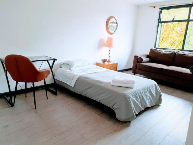 3. Large Single Bedroom with Comfy Sofa