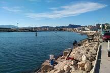 Gandia Port 8km from house