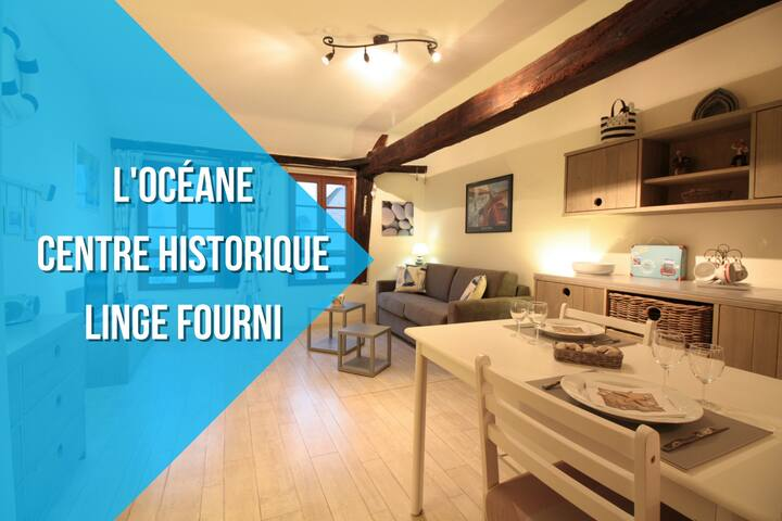 L'OCEANE : HISTORIC CENTER + LINEN PROVIDED - Vannes - Apartment