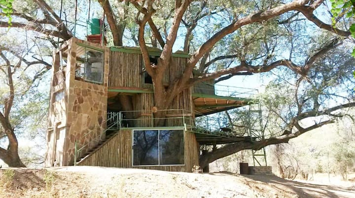 Treehouse: Enjoy nature close to WHK @montechristo