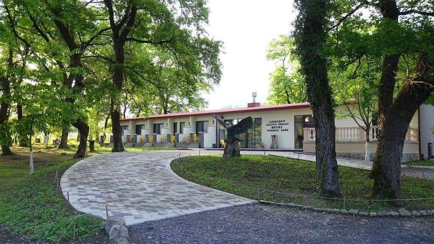 Hotel Kvareli oaks.
