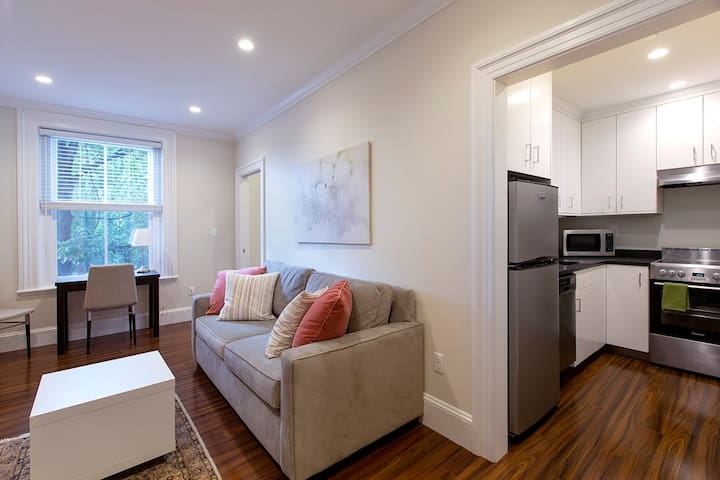 Modern Charles in Beacon Hill|1BR 1BA #6