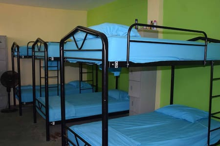 Pura Vida MINI Hostel Tamarindo - Dorm Room
