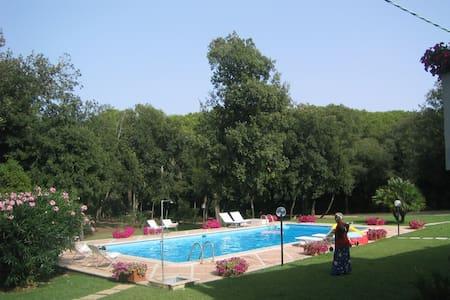 Sabaudia fronte mare + piscina + accesso al lago