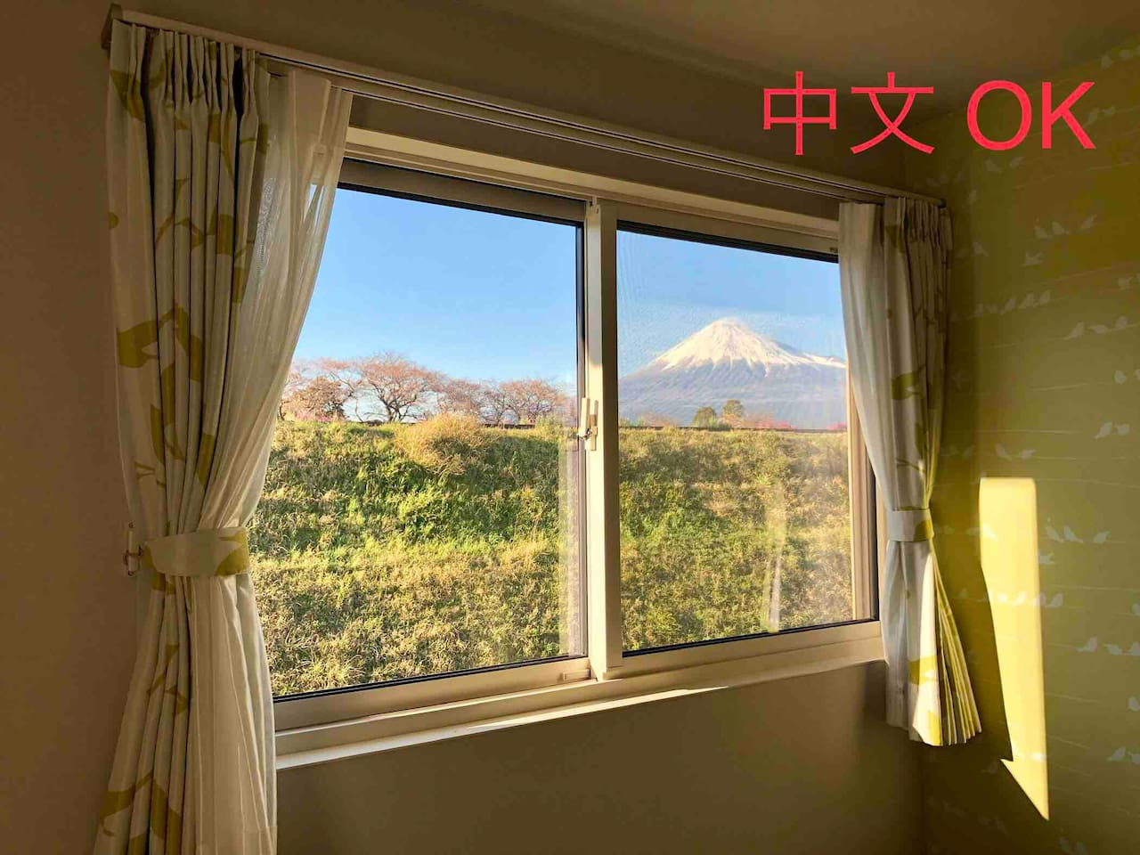 2F 宿泊室の窓から富士山が見えます You can see Mt.Fuji from window in guest room 从卧室的窗户可以看见富士山