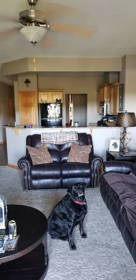 """Living room with 65"""" tv"""