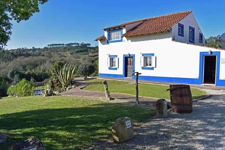 Quinta Do Bouro - House