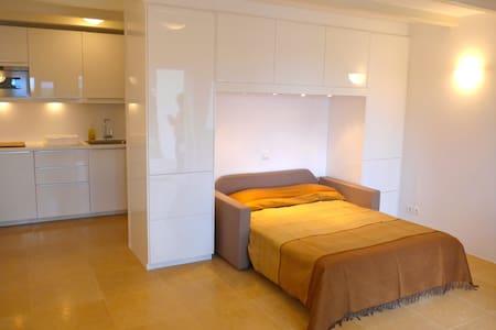 Spetses island studio flat - Ligoneri