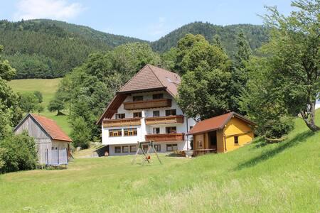 """Ferienwohnung """"Frühlingssonne"""" Hugenhof - Simonswald - Wohnung"""