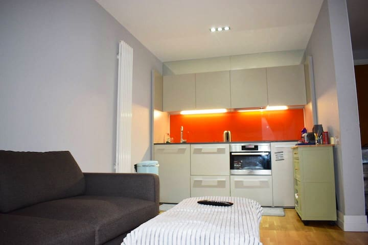 Central Penthouse Flat in Highcross