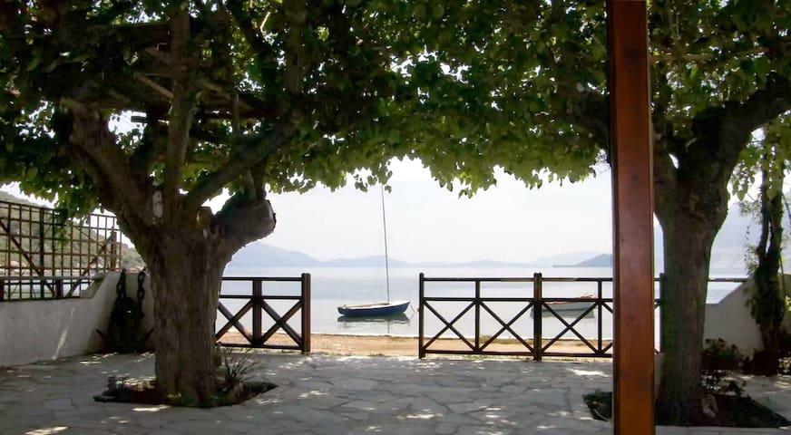 Irenes Seaside House