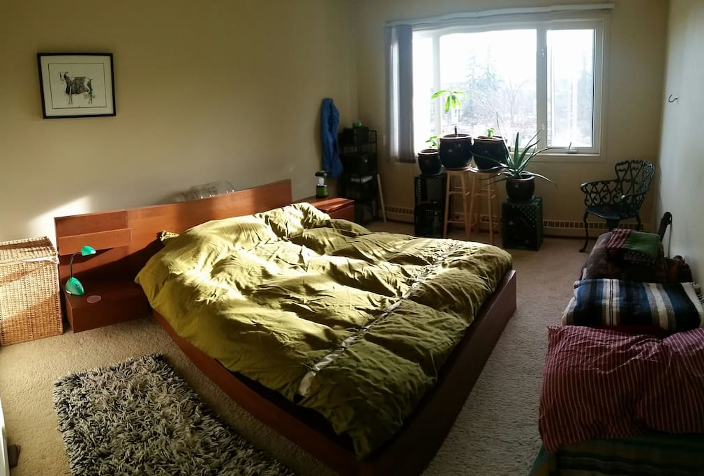 Main bedroom with queen sized bed.