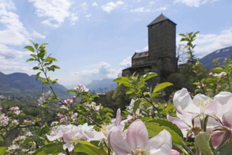 Schloss mit Apfelblüte