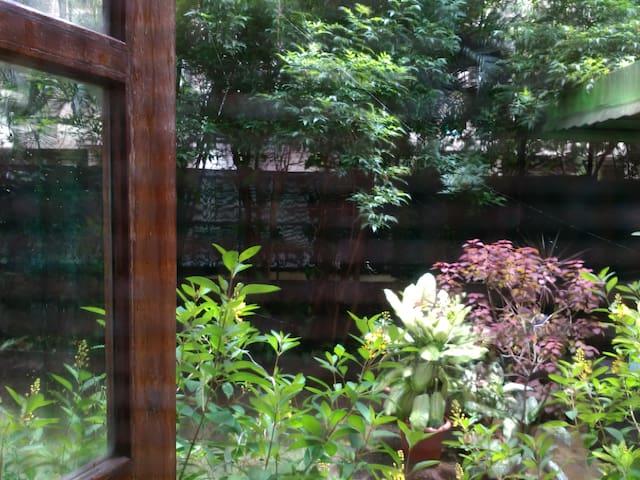 Green Garden Suite