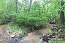 Another section of the creek.