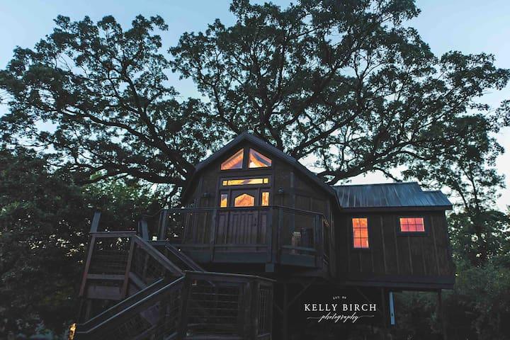 Tree house treehouse lofty lodge
