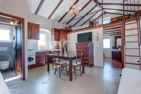 Seaview Apartment Cres Island - Vidovici