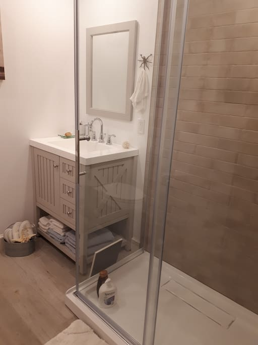private bathroom  with shower stall downstairs from main room