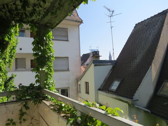 Mignon 2 pièces au coeur de la Petite France - Strasbourg - Apartment