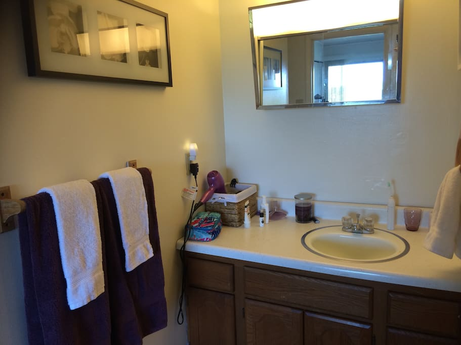 Great Views Of Mt Nittany Clean Quiet 1 Bedroom Apartments For Rent In State College