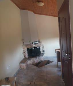 ΕΞωχικο οροφοδιαμερισμα  με ξυλινη οροφη