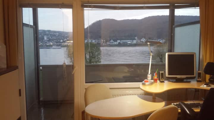 Modernisiertes Appartment mit Rheinblick