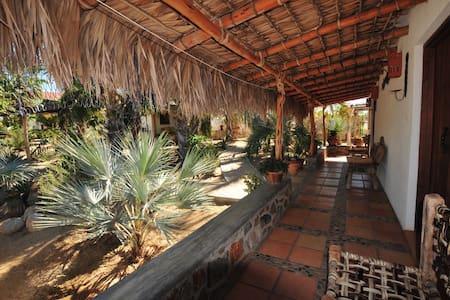 Beautiful Space in Todos Santos - Queen Room - Bed & Breakfast