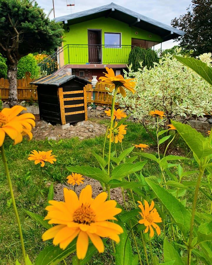 Zielony Domek Kłębowo Domek z Ogrodem
