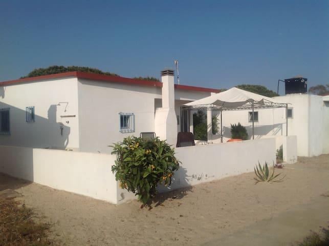 Casa Jill, 322 Armona Island