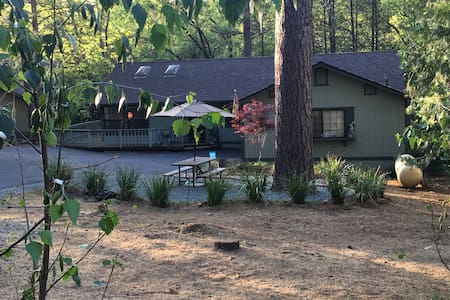 Grizzly Circle Hideaway - Groveland - Hus
