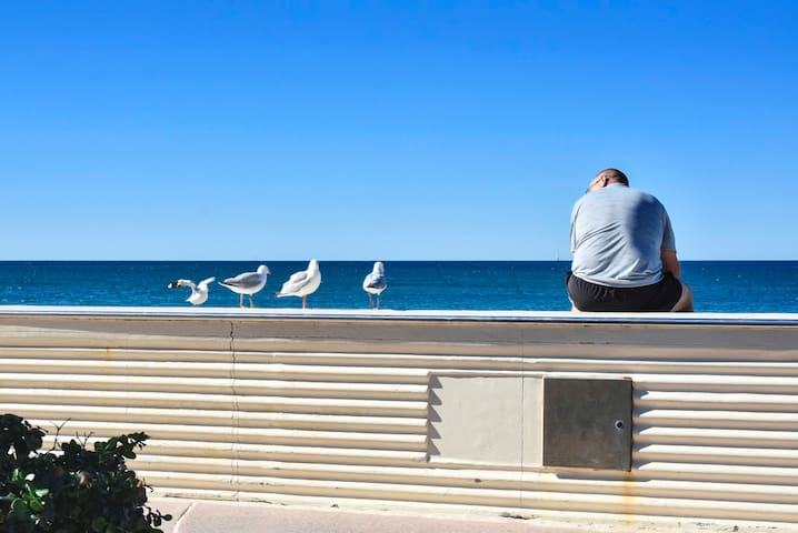 Come sit with the sea gulls and take in the views of Kings Beach