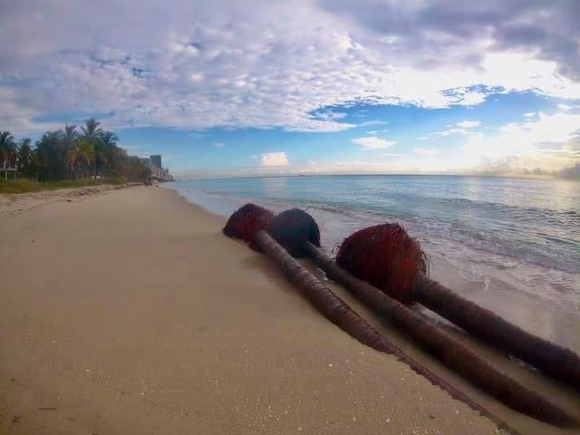 Take a walk to Golden Beach