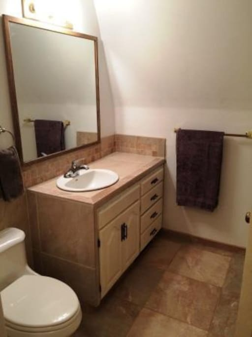 Newly remodeled bathroom with tiled shower