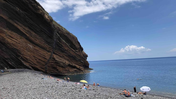 Canary island Tenerife Playa FañabeTorviscas
