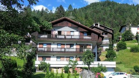 Dolomites 2 apartments