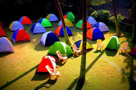 Coconut Jungle Camping, Laxmi Garden, Shirgaon