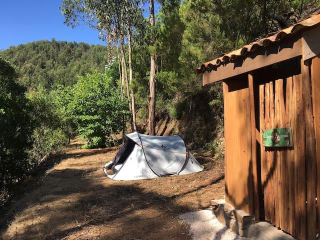 Tent Comfy Bed Incl. Breakfast @ Yoga Surf Retreat