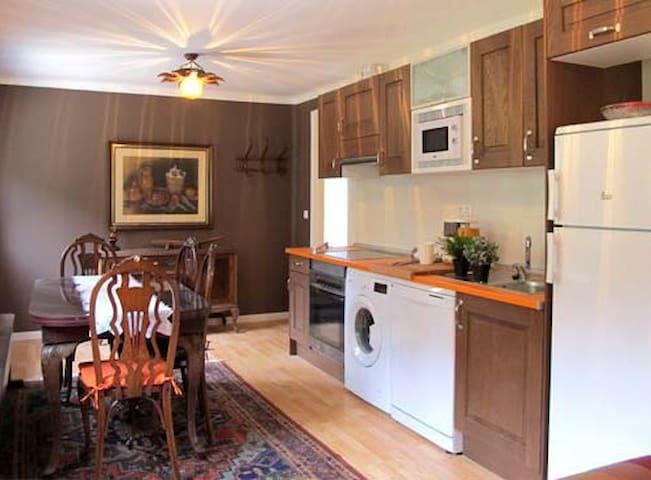 Apartamento con encanto en el Pirineo - Sant Llorenç de Morunys - Leilighet